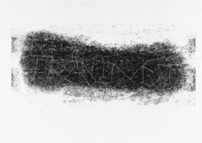Plexiglas-Stiche 2007 - 51,5 x 21 cm und 45 x 30,7 cm - Ein Haiku von Basho - 4 Blatt - DU TRÄUMST